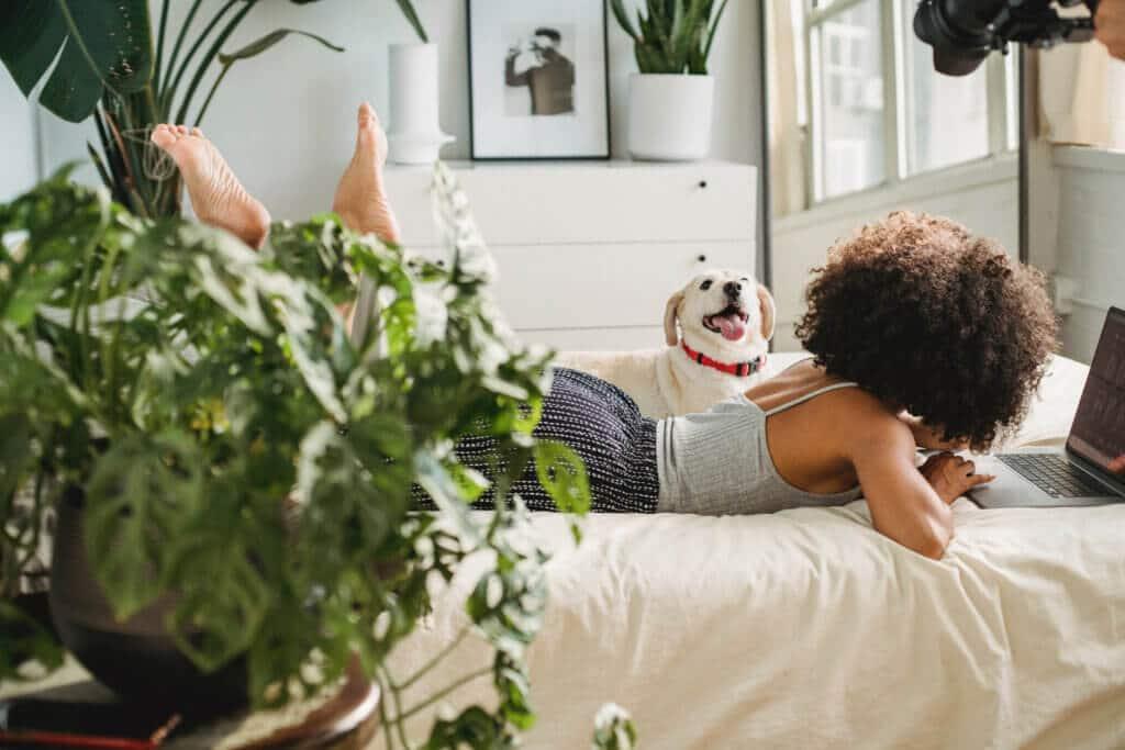 Den Schlaf mithilfe von Zimmerpflanzen verbessern? Klappt tatsächlich!
